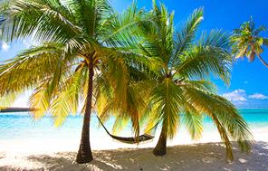 royal_caribbean_mexico_cruise_special.jpg